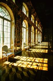 Большой зал Царскосельского дворца