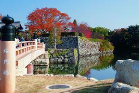 Мост надо рвом на пути к замку
